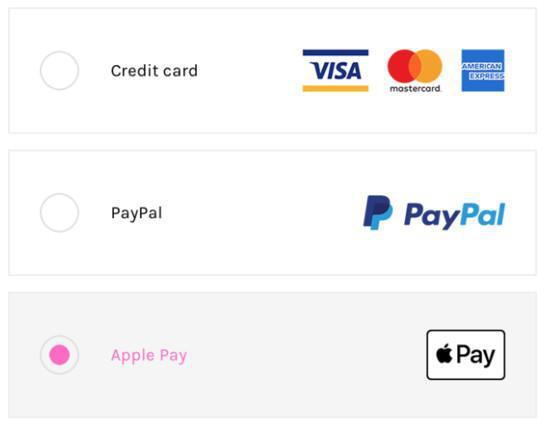 Visualización de los diferentes métodos de pago en el proceso de pago.