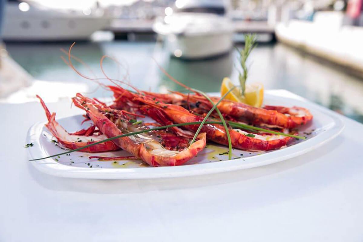 Productos frescos y de la mejor calidad, ¡directos del mar a la mesa!