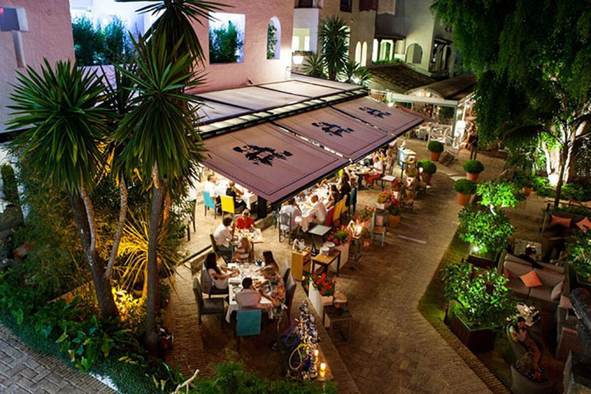 Tapeo de autor con raíces andaluzas. Coctelería, terraza y barra de ostras