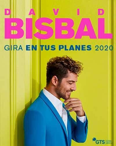 David Bisbal: Gira En tus Planes