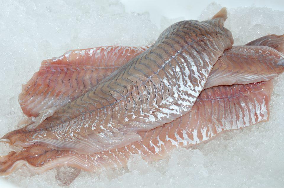 Fisch-Feinkost-Imbiss Klene