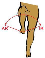 X-CARD 16: Ist Ihr Knie fit ?