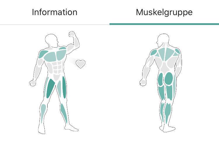 X-CARD 20: Wer (zu viel) rastet, der rostet. Die Muskulatur.