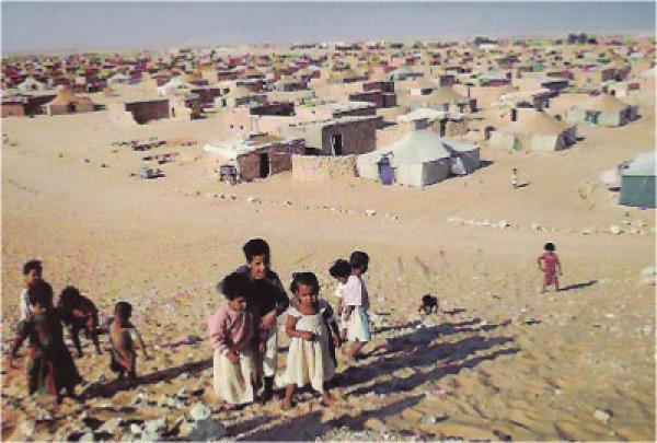 """كندا.. عين على """"مصير الأطفال الصحراويين المهجرين قسرا من تندوف، بالجزائر، إلى المخيمات الكوبية"""""""