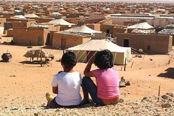 جنيف: منظمة إيطالية تدعو إلى تحرك عاجل لإنهاء استغلال الأطفال بمخيمات تندوف