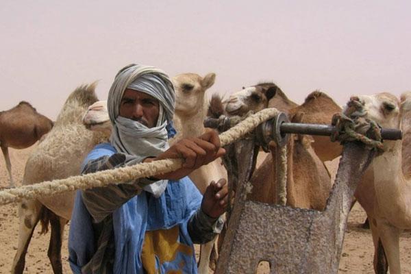 التلفزيون الإسباني يحتفي بحياة الرحل وتنقلاتهم في الصحراء المغربية