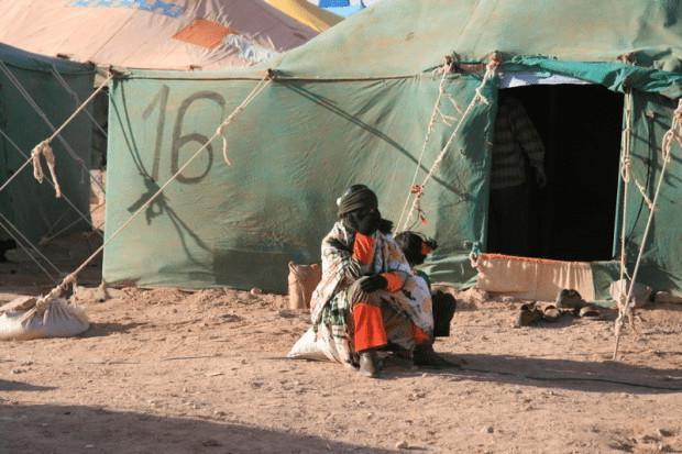 مساءلة المفوضية السامية لشؤون اللاجئين بشأن مسؤولية الجزائر عن استمرار معاناة سكان تندوف