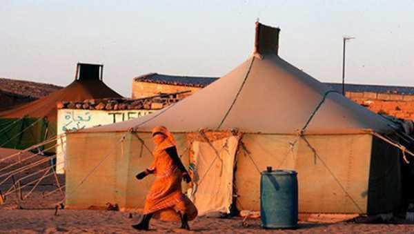 الدورة 72 للمفوضية السامية لشؤون اللاجئين.. الوفد المغربي يدحض المزاعم الجزائرية
