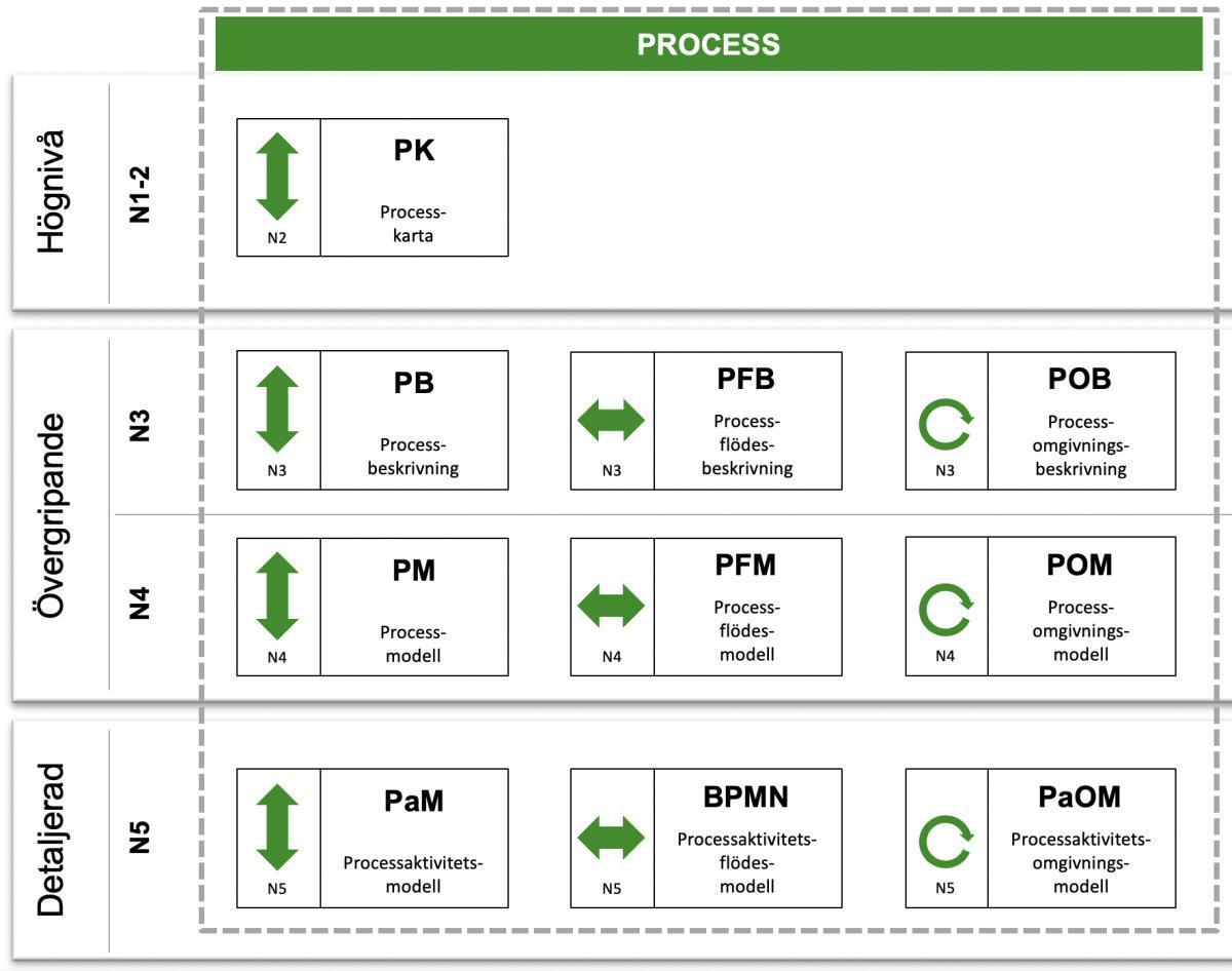 V - Process