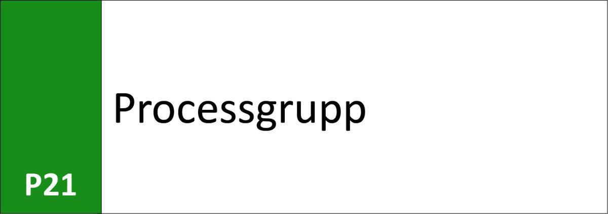 P21 Processgrupp