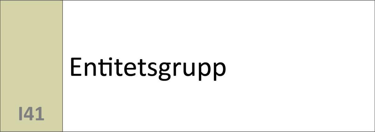 I41 Entitetsgrupp