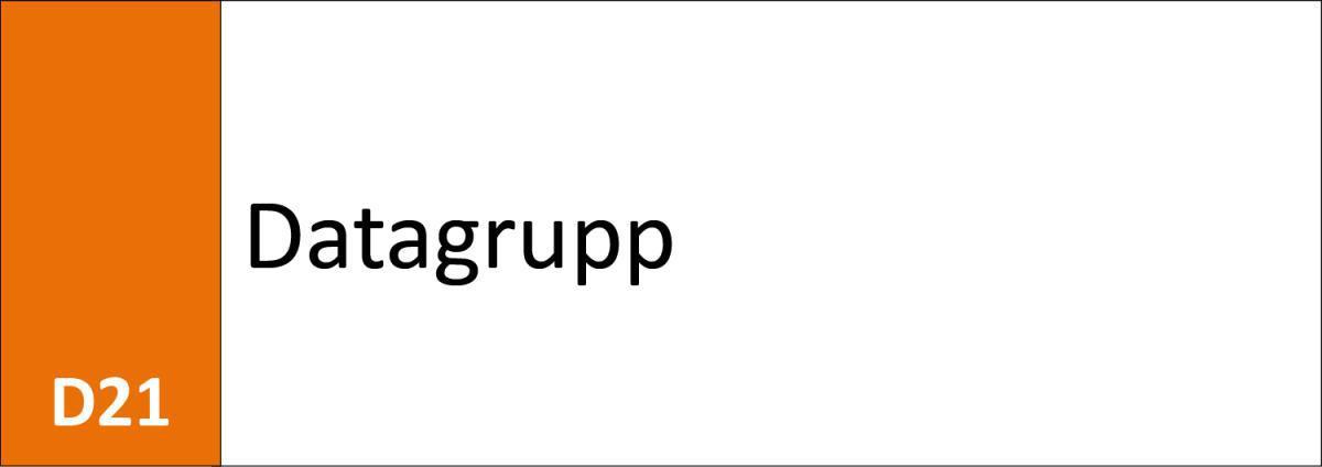 D21 Datagrupp