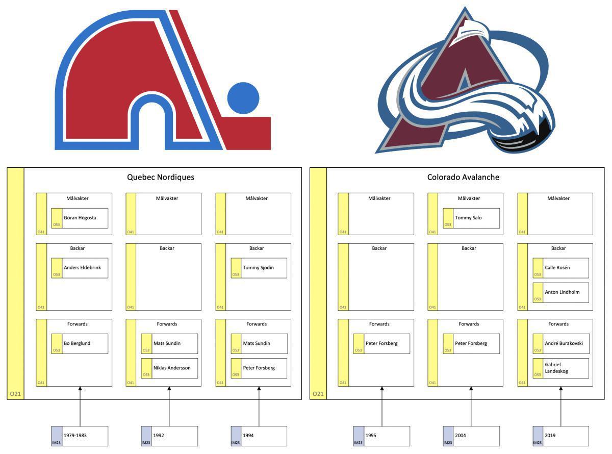 Quebec Nordiques - en studie av en organisation i utveckling