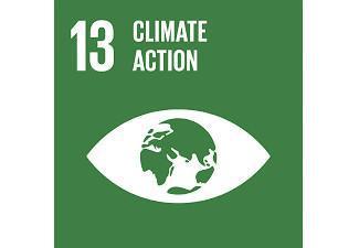 Sustainable Development Goal 13 (SDG 13)