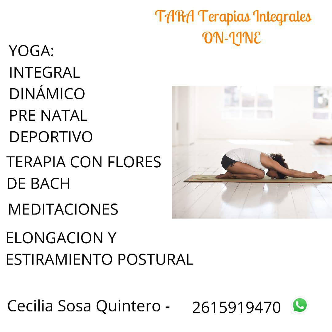 TARA Terapias Integrales