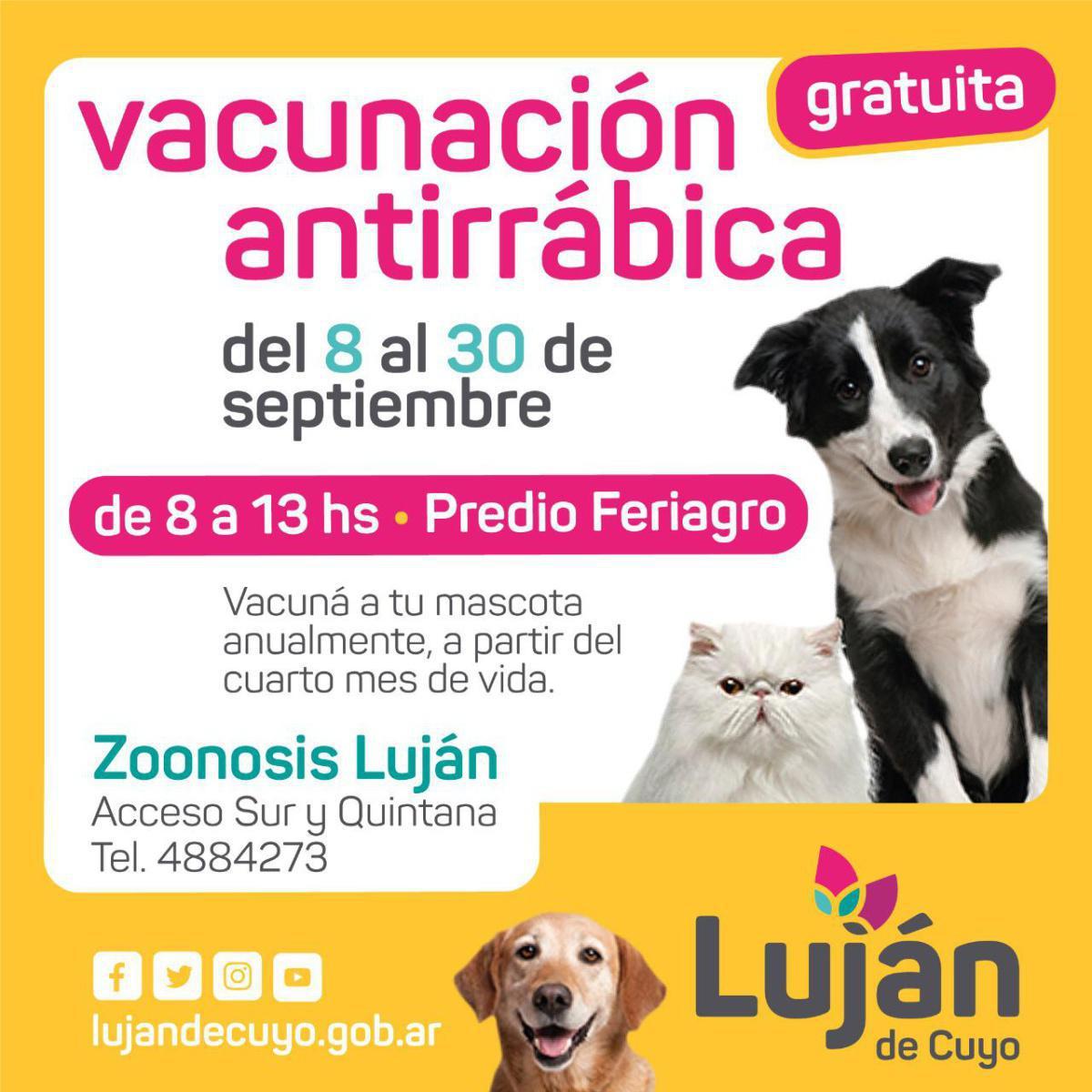 Se realizará en Luján una importante campaña de vacunación antirrábica