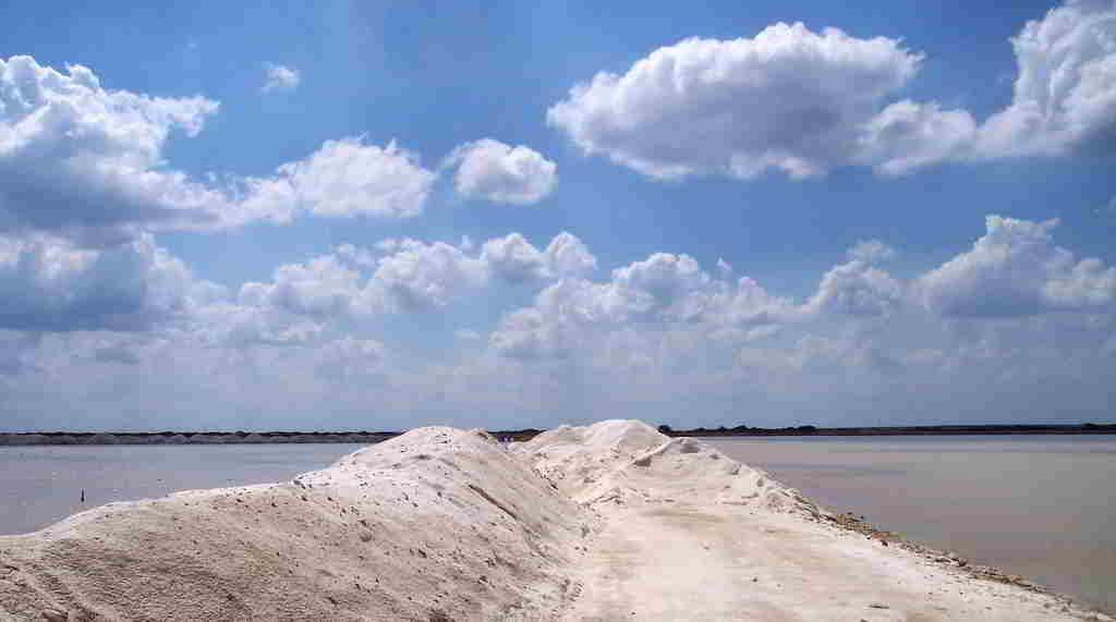 La sal, oro blanco en la Guajira