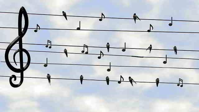Recorrido musical de Colombia