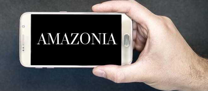 Colombia promueve la salvaguardia de la denominación de Amazonia en Internet