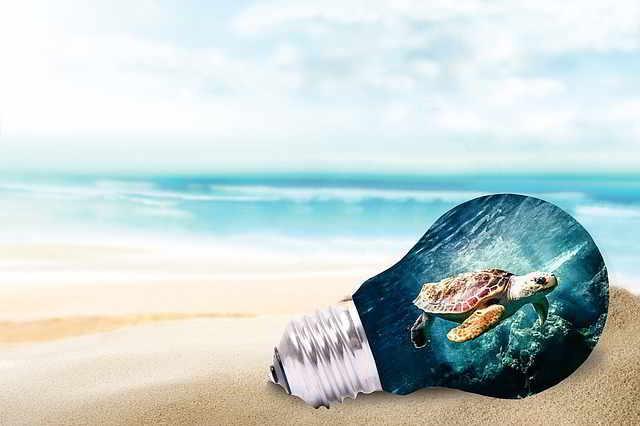 22 recomendaciones para la conservación y avistamiento de las tortugas marinas en las playas del departamento de Bolívar