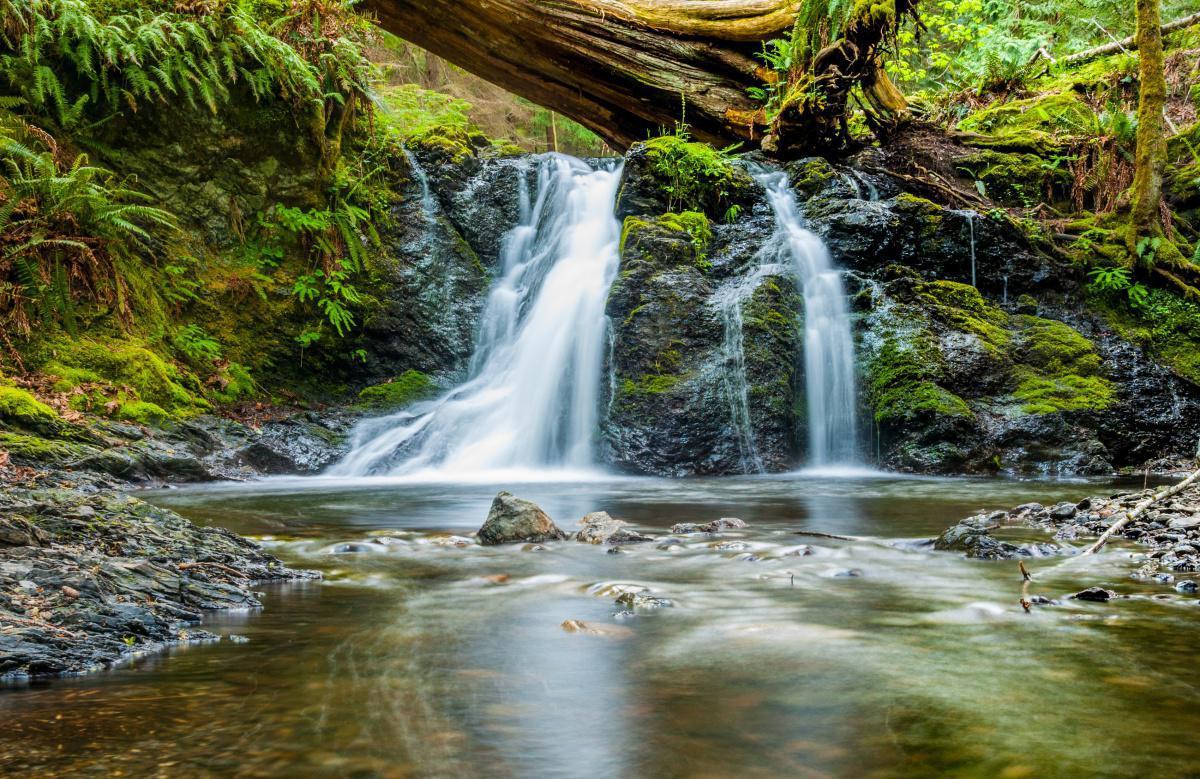 Unión Europea entrega insumos para impulsar emprendimientos de las comunidades en el Parque Nacional Natural Utría