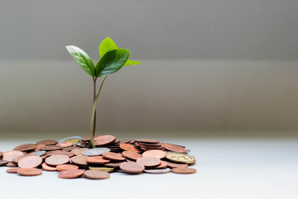Fenalco lanza línea de crédito para microempresarios, pequeños comerciantes e independientes con la Fintech Referencia y el Banco Caja Social
