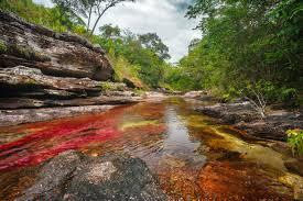Presidente Duque anuncia reapertura gradual de ocho parques naturales del país