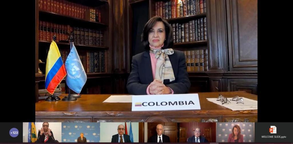 Canciller Blum participa en conmemoración de los 20 años de la Convención de las Naciones Unidas contra el Crimen Organizado Transnacional