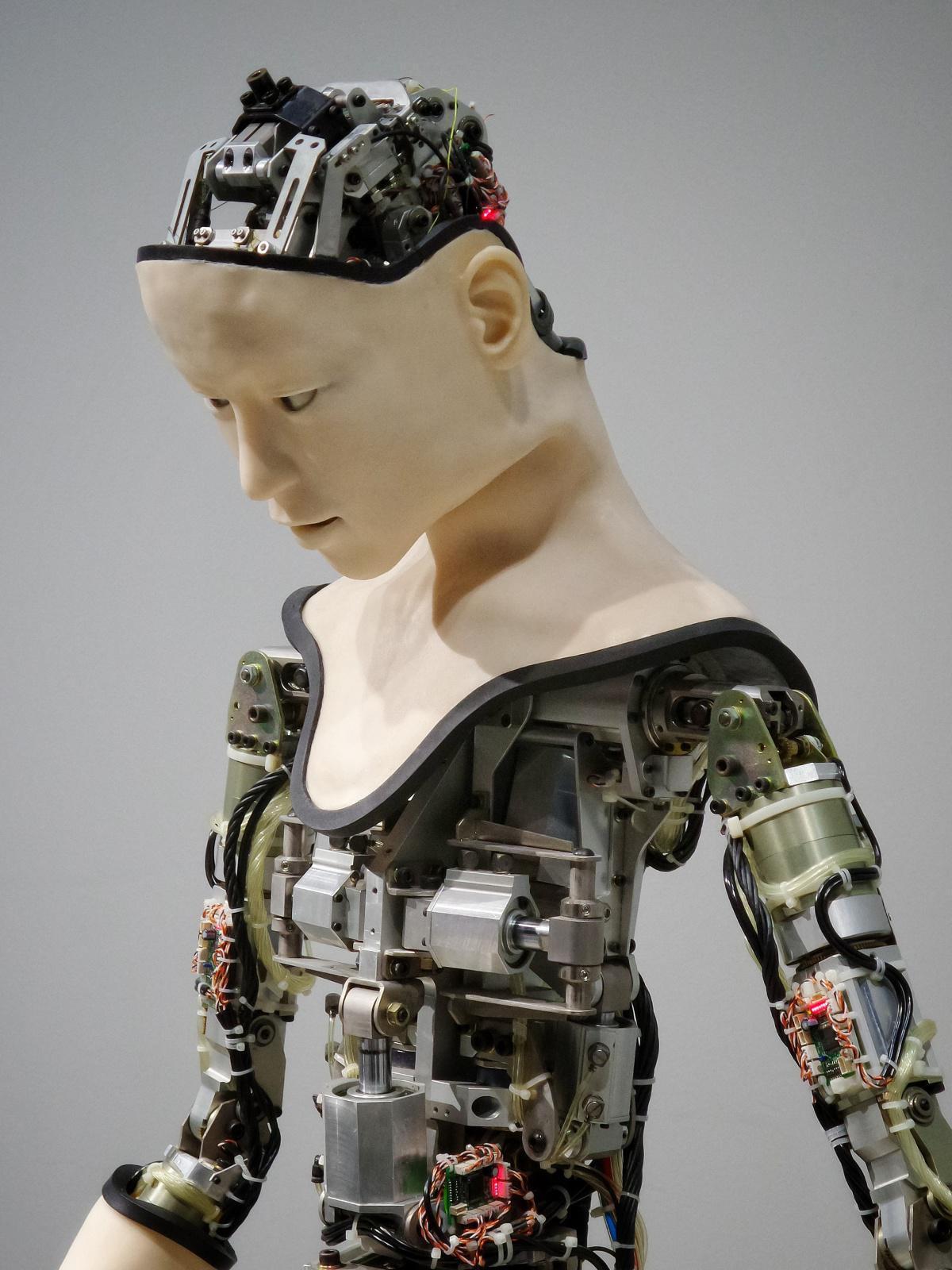 Cursos gratuitos en Inteligencia Artificial, Análisis de datos y Habilidades profesionales para mujeres abrió el Ministerio TIC, la Consejería Presidencial para la Equidad de la Mujer e IBM
