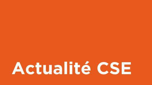 Bilan 2019 du budget ASC du CSE
