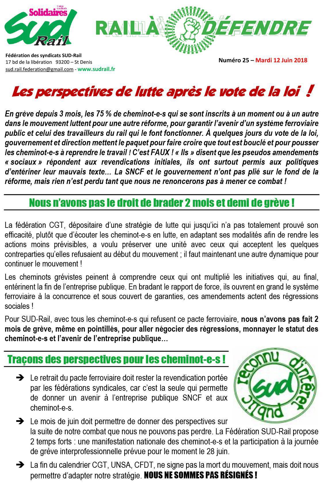 RAIL À DÉFENDRE N°25 - LES PERSPECTIVES DE LUTTE APRÈS LE VOTE DE LA LOI !