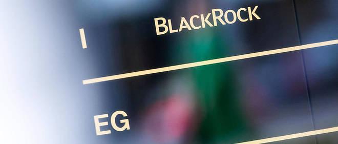 « Un renard dans le poulailler » : quand BlackRock devient conseiller environnement de l'UE