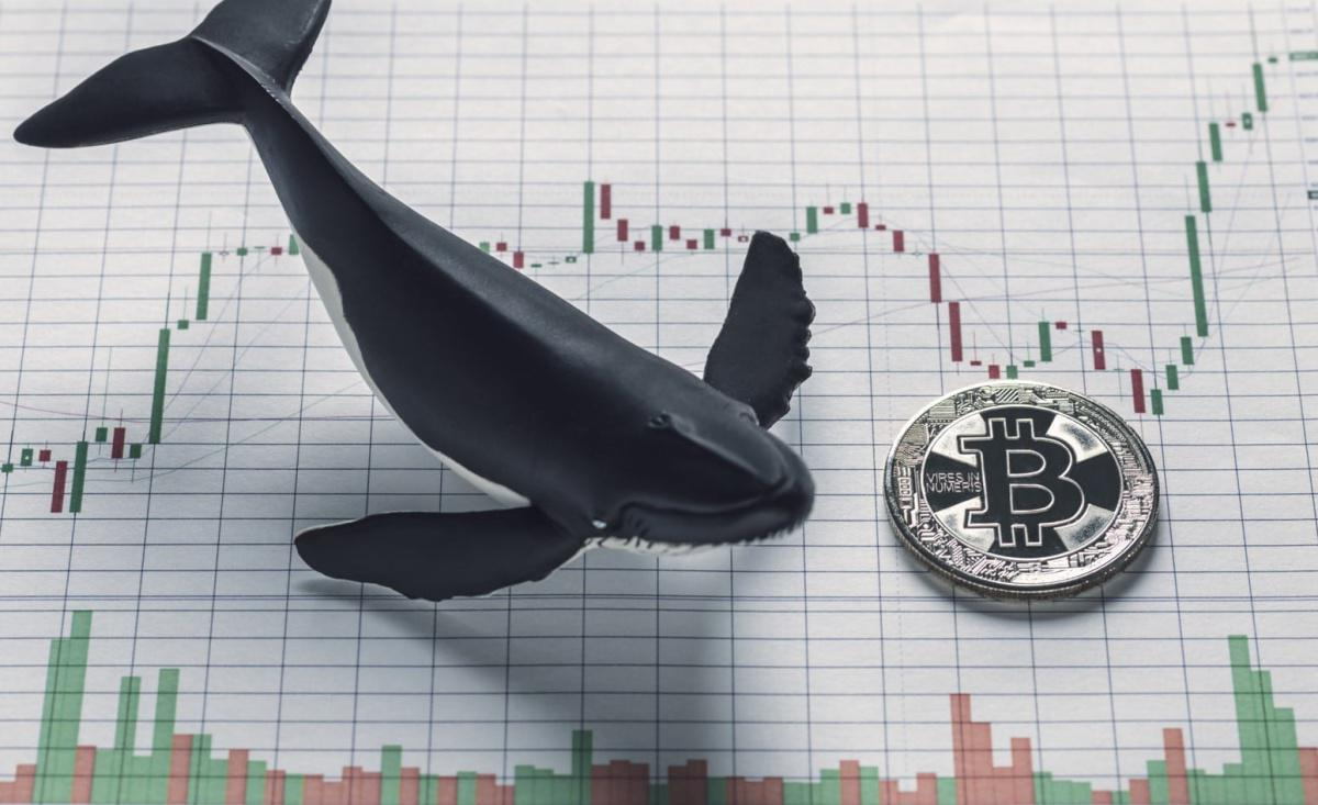El BTC/USD presenta un escenario alcista a medio plazo debido una posible compra profesional