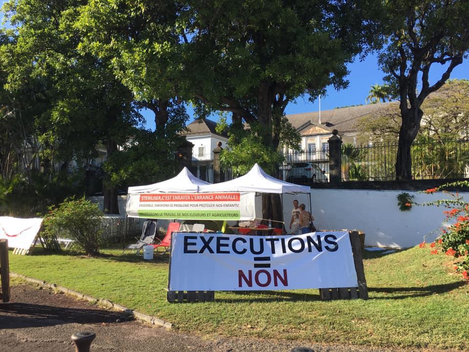 Errance mortelle sur l'île de la Réunion