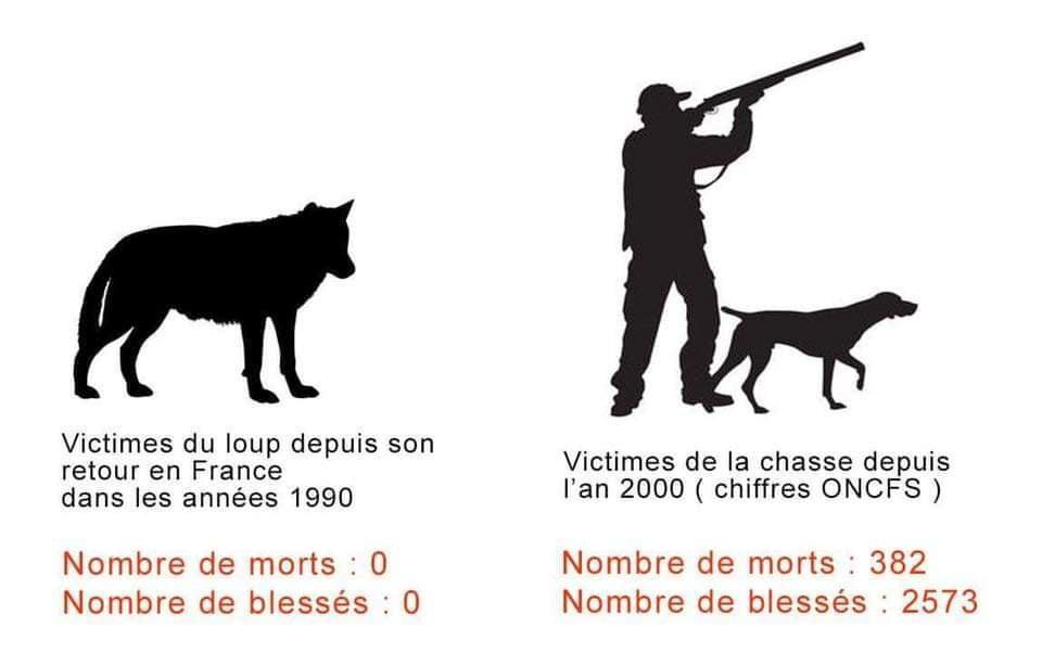 La chasse est criminelle !
