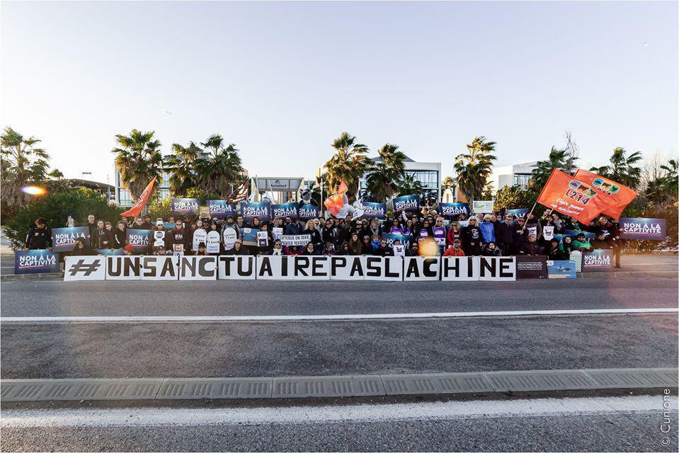 Des slogans pour sauver nos Orques !