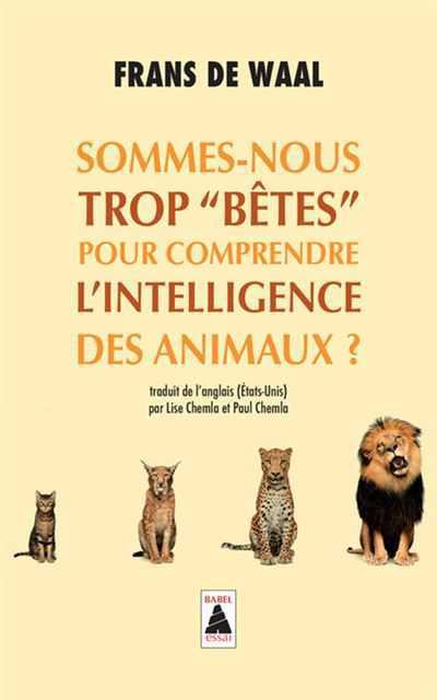 Camille Brunel, Interview pour nos métamorphoses
