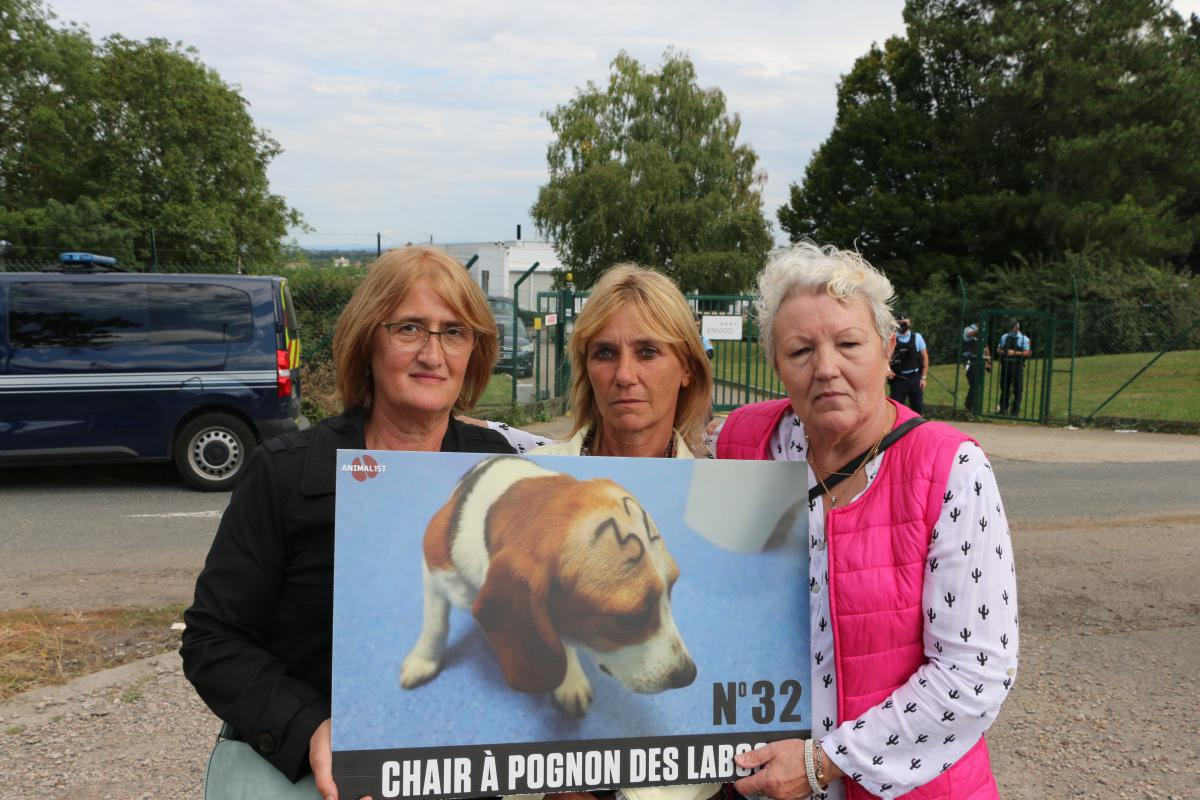 Free the MBR Beagles France - Gannat J1