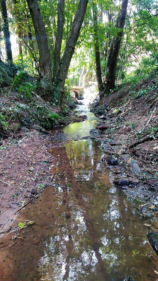 Wasserentnahmen aus Gewässern