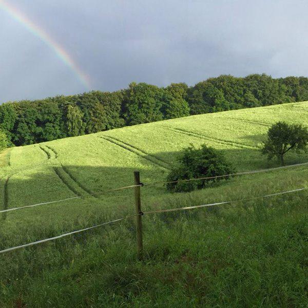 Regenbogen über Krombach
