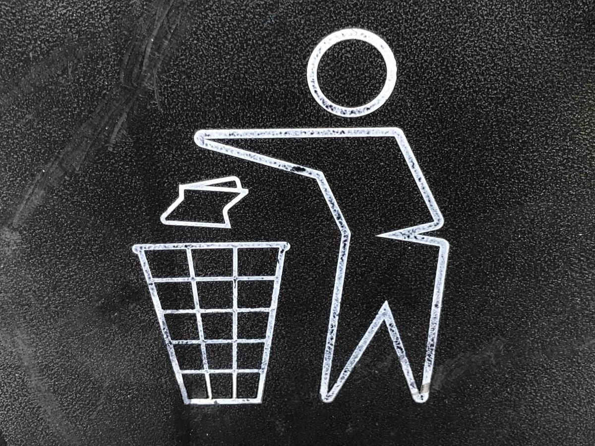Cuidado y limpieza del patio