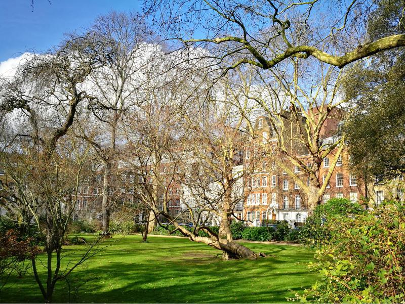 Holland Park & Kensington Mews