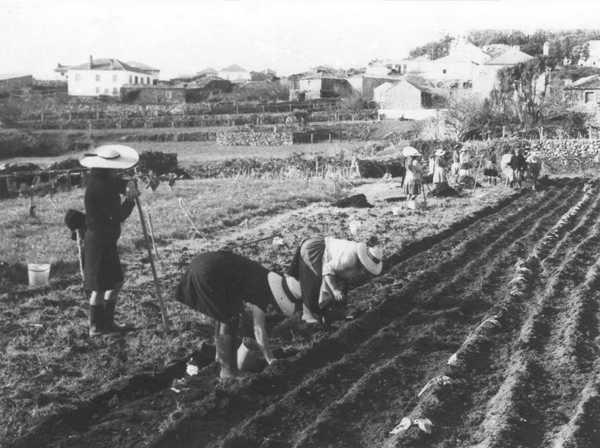 Núcleo Museológico Agro-Marítimo de Carreço (PT)