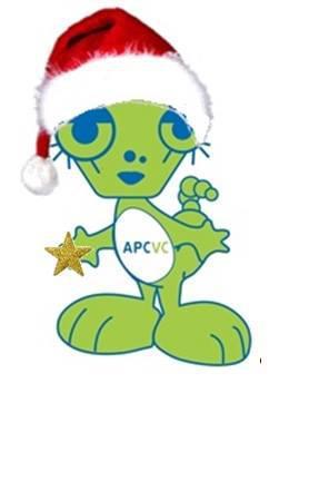 Feira / Venda de Natal da APCVC