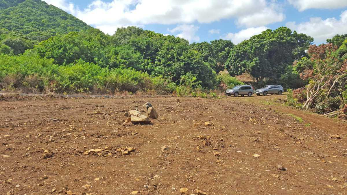 Land for Sale in Moka - 156922