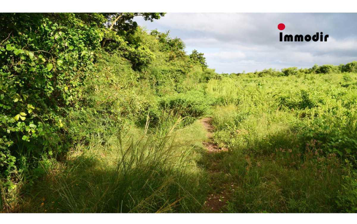 Residential Land for Sale in Pereybere - 157092