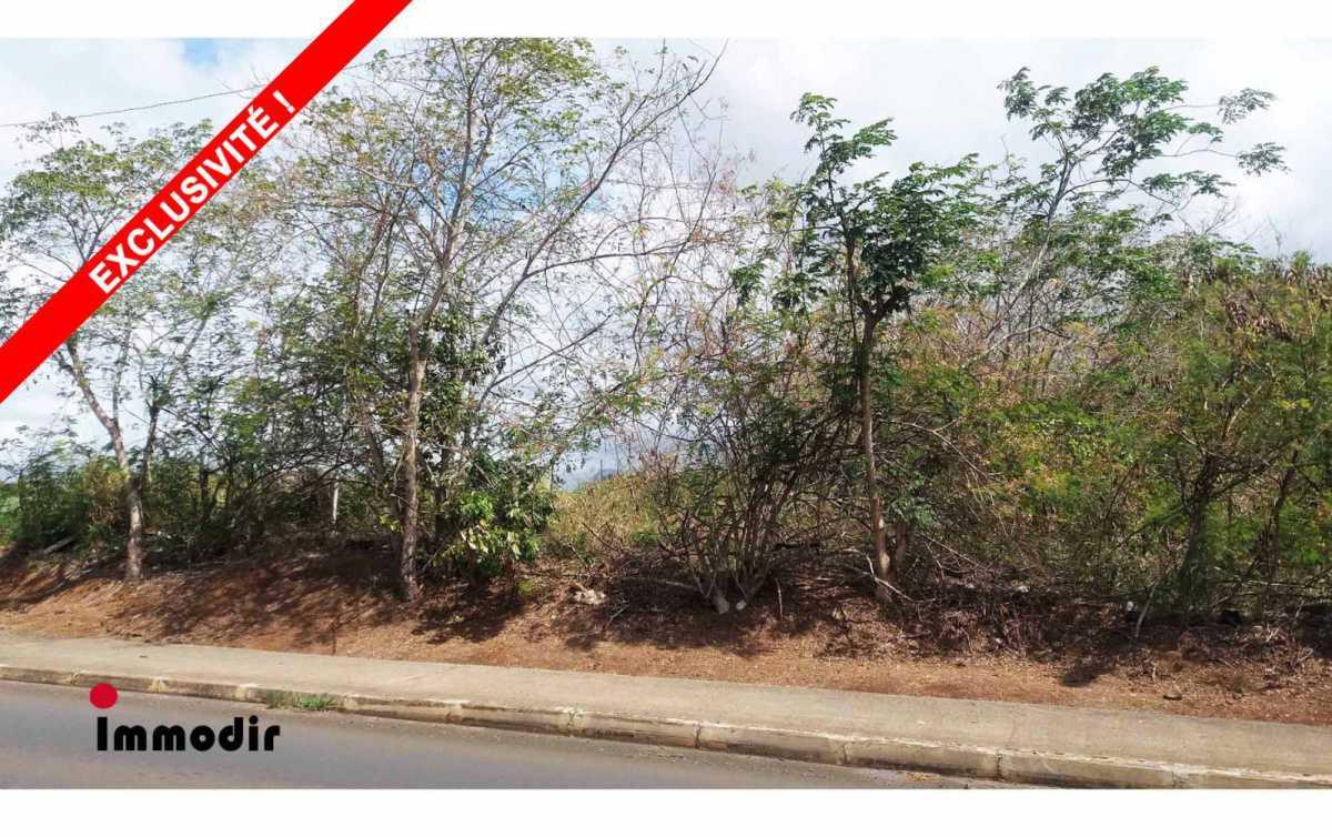 Commercial Land for Sale in Triolet - 157115