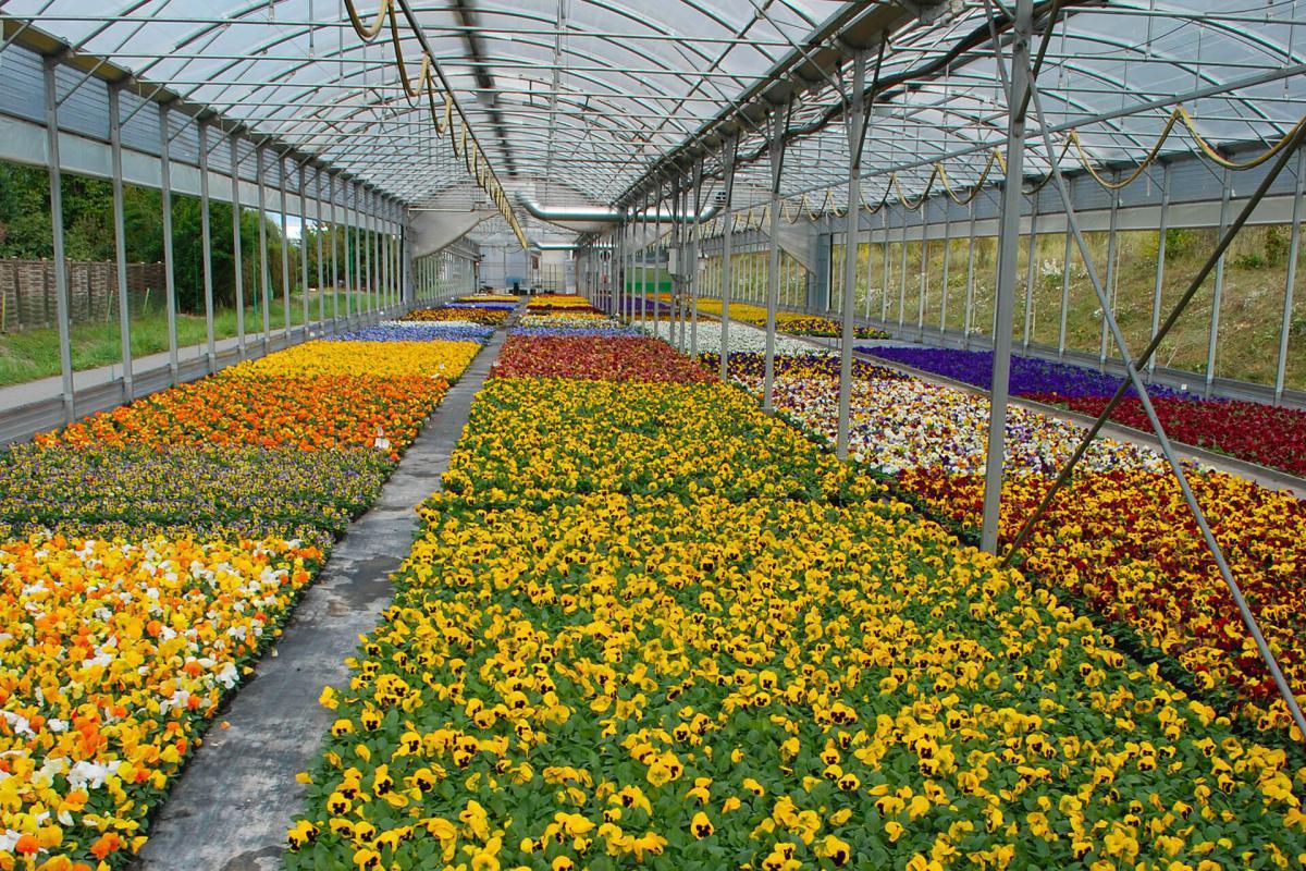 Granges - horticulture