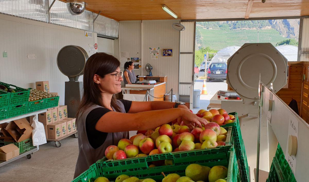 Chez Egg - Légumes et Fruits