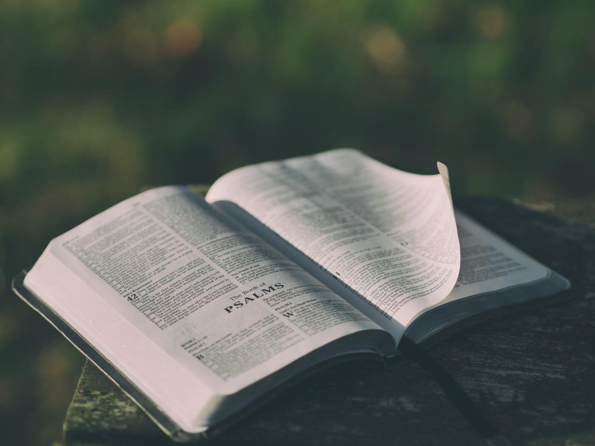 Bibelstudium Ved Finn Olav Pedersen - 1